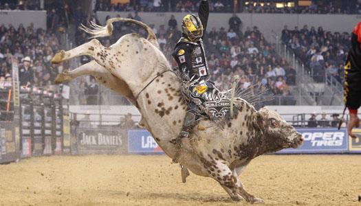 Professional Bull Riders (PBR)