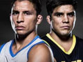 Ultimate Fighter Finale