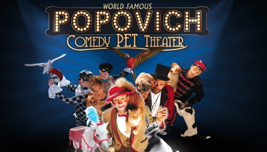 Popovich Comedy Pet Theater